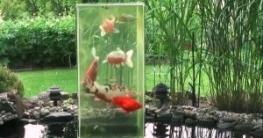 Der Teichturm - Ein Aussichtsturm für Fische