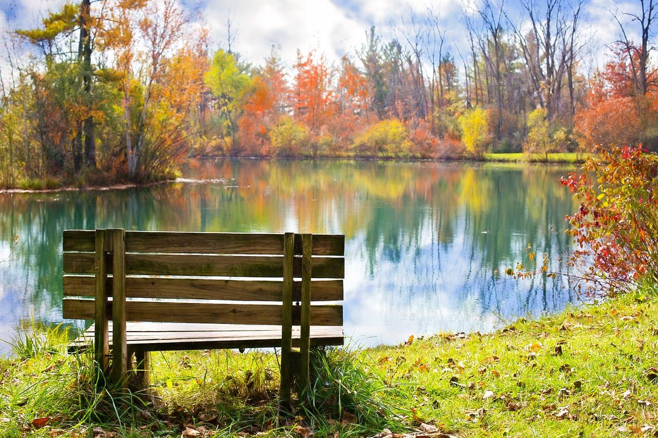 Gartenbank am Teich