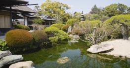 Geländer am Teich
