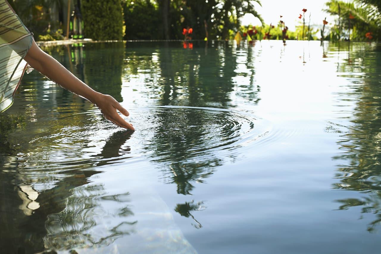 Sauberes Teichwasser