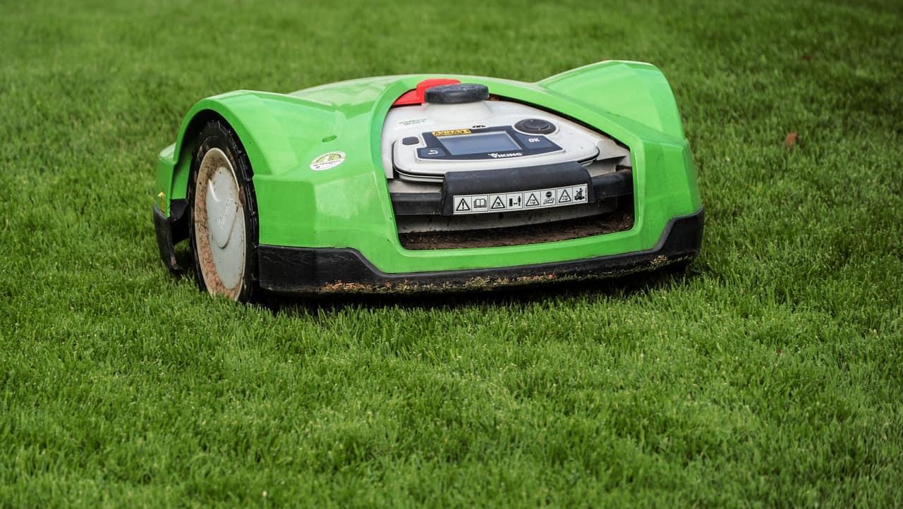 Die richtige Rasenpflege
